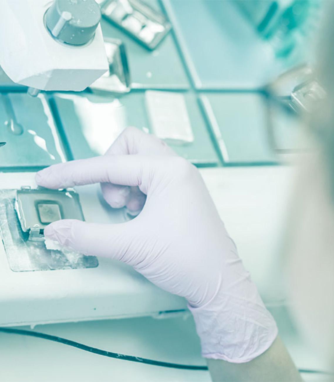 Symbolische PCR Testung auf das Coronavirus am Grazer imaH Institut